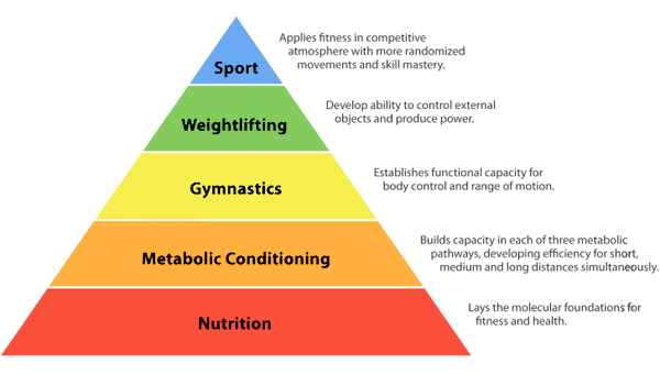 Nutrition is the molecular foundation for fitness and health